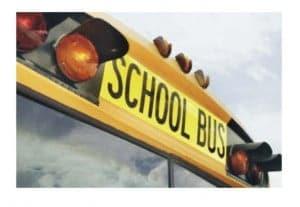 School Bus WP 300x207 1
